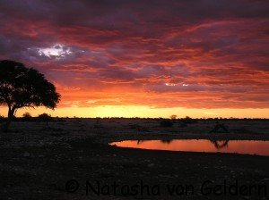 Etosha sunset, Namibia