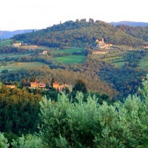 Ah the romantic landscape of the Chianti region in Italyshellip