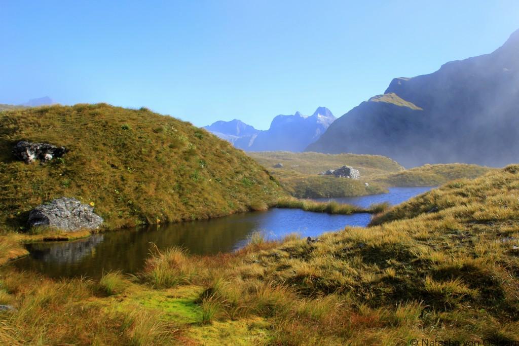 Mackinnon Pass Milford Track New Zealand Photo by Natasha von Geldern