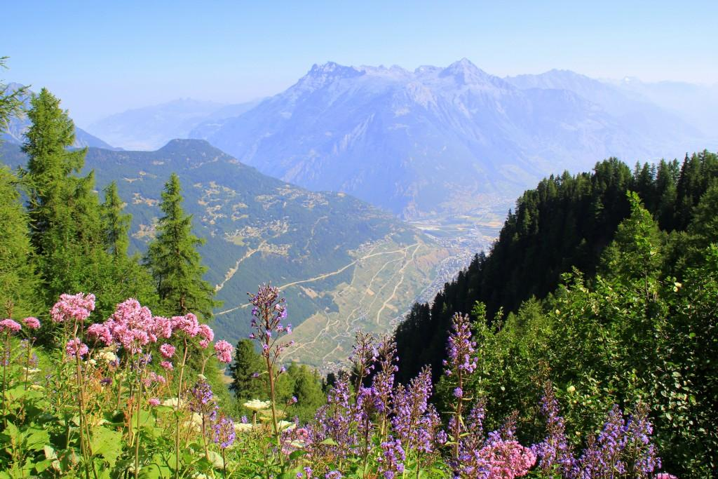 View of Martigny from the Tour du Mt Blanc, Switzerland
