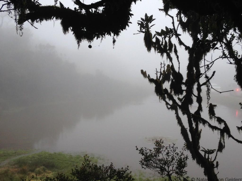 World's End Walk Horton Plains Sri Lanka Cloud Forest