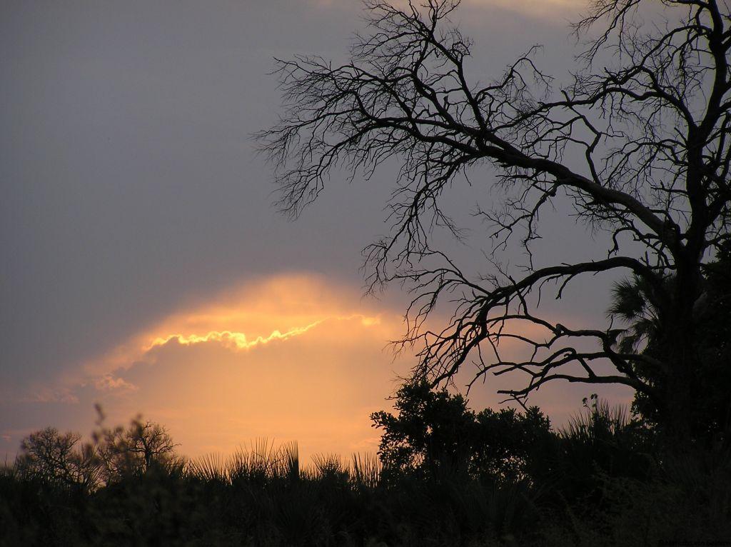 Okavango Delta sunset, Botswana