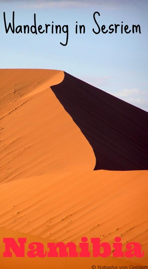 The Red Dune Sea of Sesriem Namibia