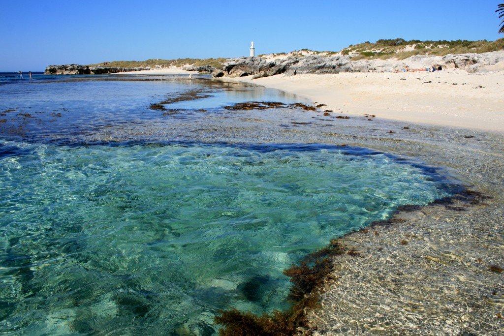The Basin snorkelling - Rottnest Island