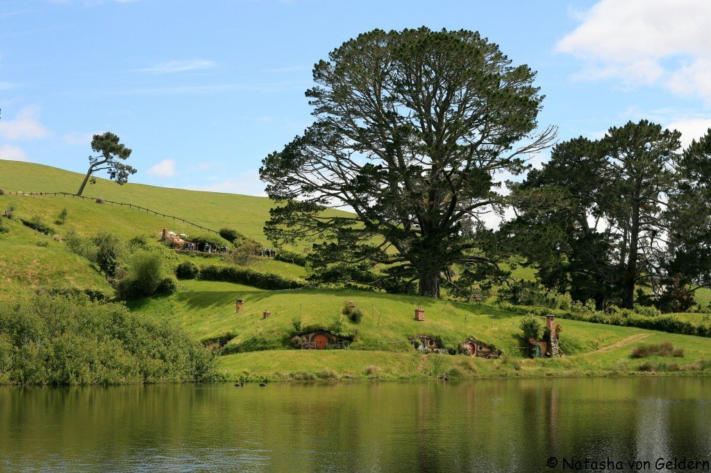 The Party Field, Hobbiton, New Zealand