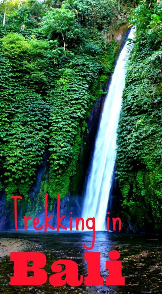Trekking in Bali, Indonesia