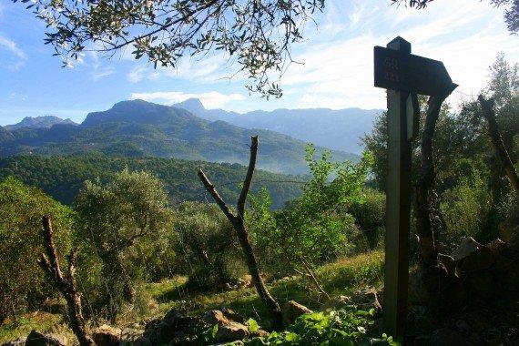Walking in Mallorca's Serra de Tramuntana