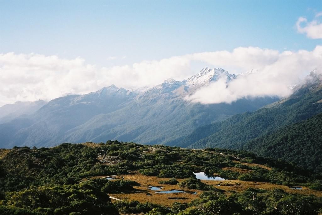 Kea Point Walk, Fiordland NZ
