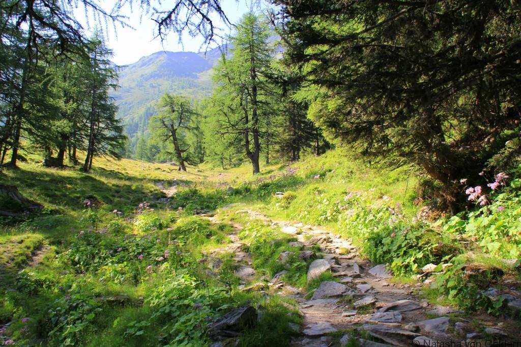 Switzerland hiking the Tour du Mt Blanc