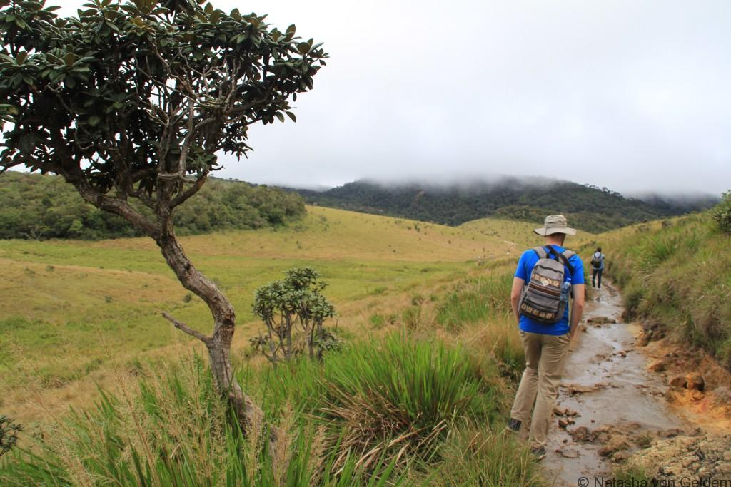 Walking the World's End Walk Horton Plains Sri Lanka