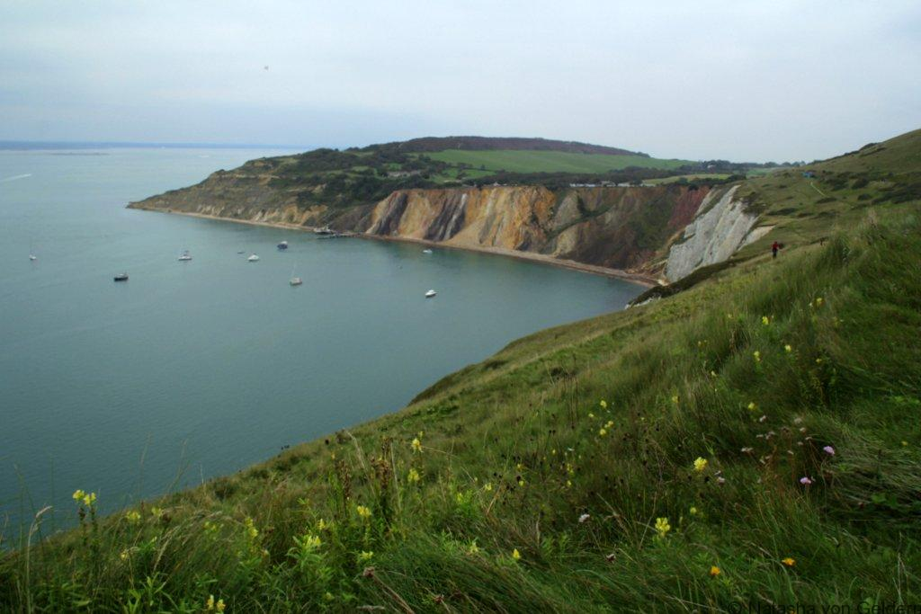 Isle of Wight coastline