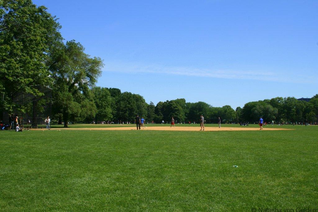 Central Park, New York City web