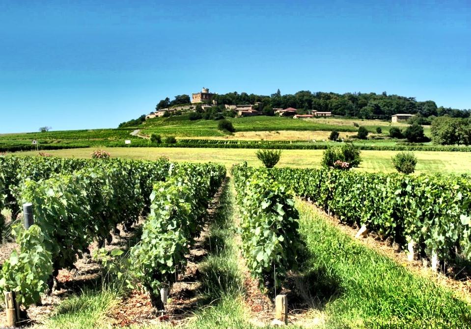 chateau-de-montmelas-beaujolais-wine-region-france