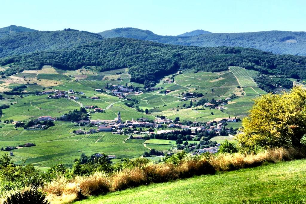 mt-brouilly-view-beaujolais-wine-region-france