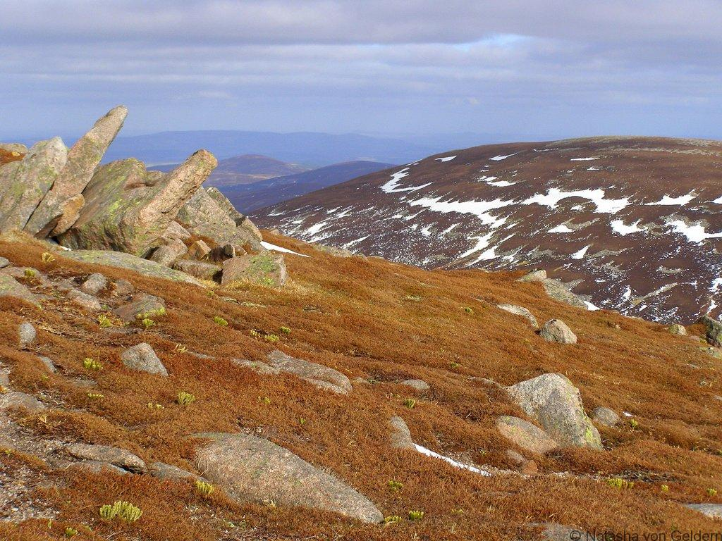 Cairngorms-hike-in-Scotland