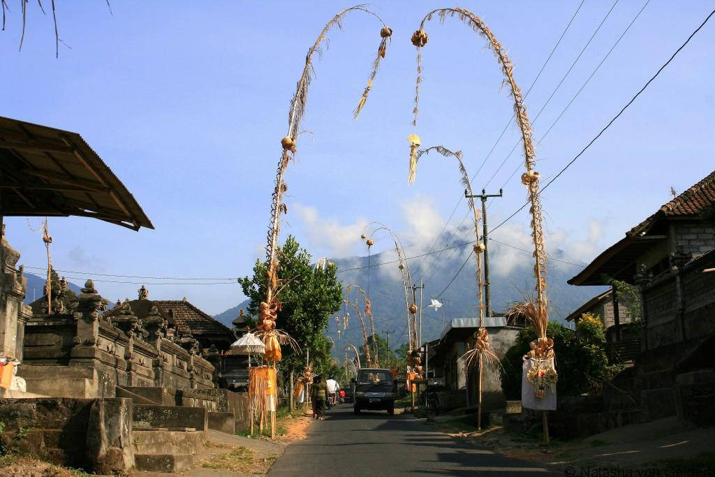 penjor-decorations-driving-in-bali-