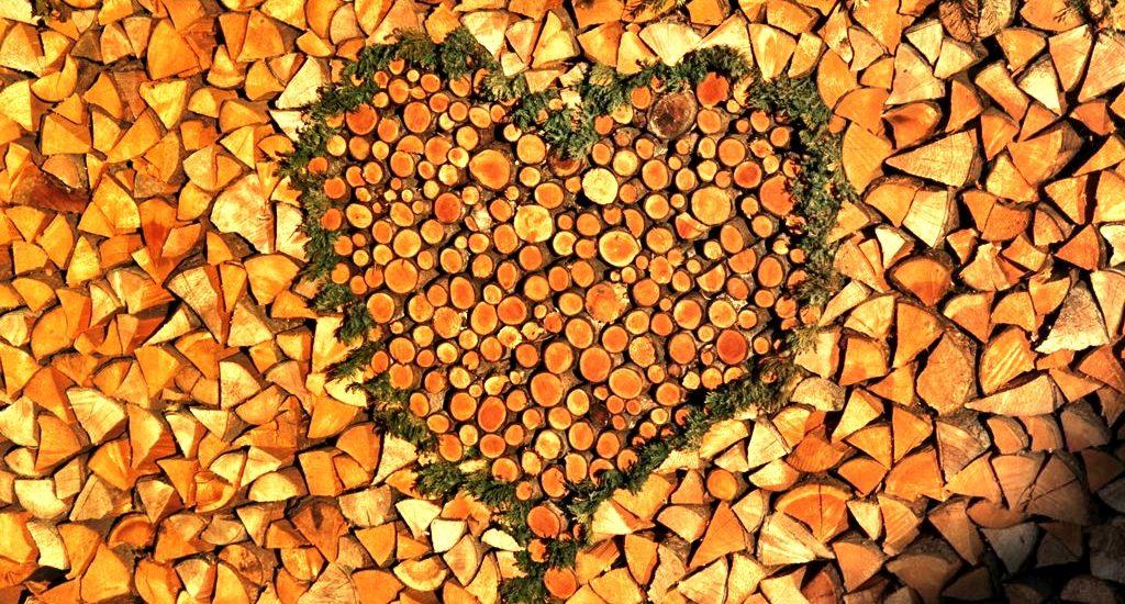 Wood pile Alpbach village Tirol Austria