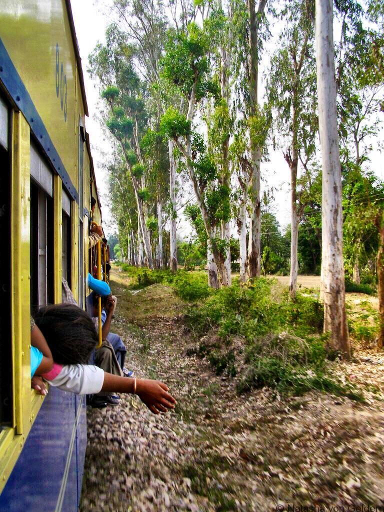 Kangra Valley Railway on the train India