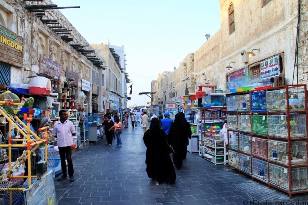 Souq Waqif pet street Doha Qatar