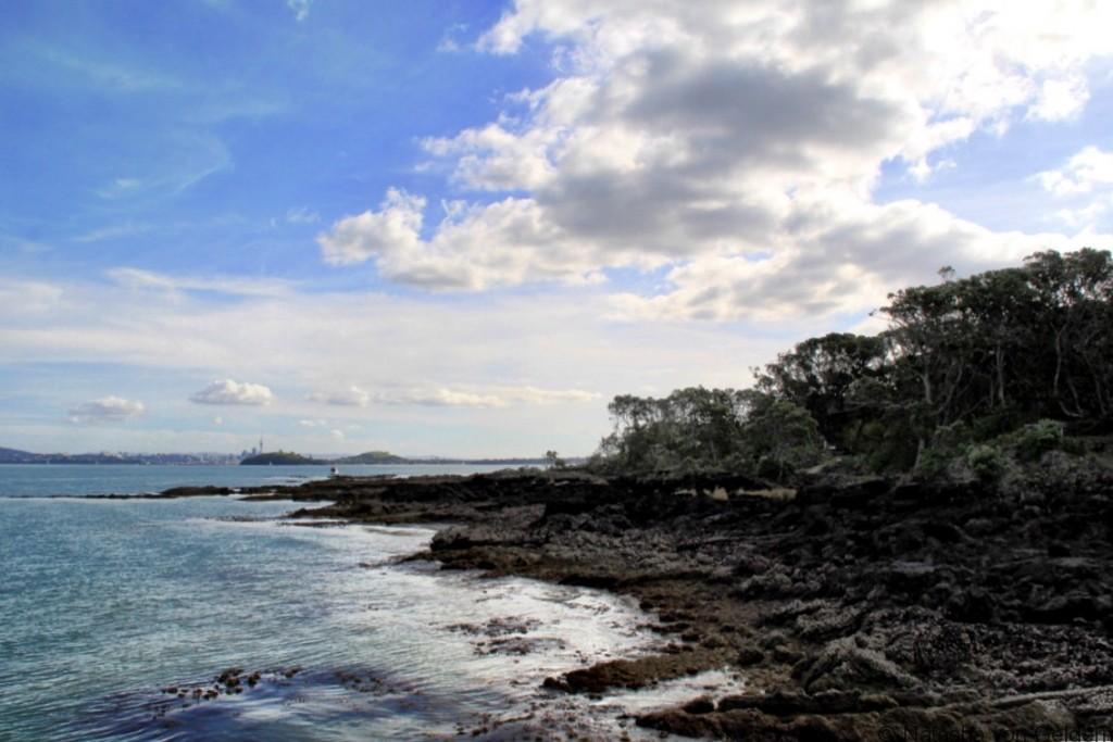 Rangitoto Island coastline New Zealand